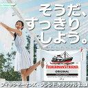 フィッシャーマンズ フレンド オリジナル 白 FISHERMAN'S FRIEND ORIGINAL 12袋セット