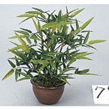 ★20%OFF★ テーブルバンブー H30cm グリーン 鉢植え W3A5105-54