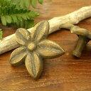 簡単施工な真鍮取っ手 バリのお花「フランジパニ」取っ手/N0...