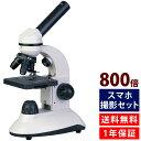 顕微鏡セット 子供 40倍-800倍 小学生 スマホ撮影セッ...
