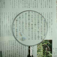 Evo 處理放大鏡 1230年-P 2 x & 4 x 75 毫米塑膠透鏡 [掌上型放大鏡放大鏡放大鏡她] 池田透鏡放大鏡放大鏡放大鏡玻璃
