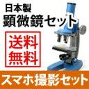 【期間限定 ★ 送料無料 】 顕微鏡 セット 夏休み 自由研...