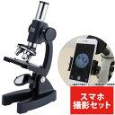 顕微鏡 小学生 スマホ撮影セット 学習 SB-600 ビクセ...