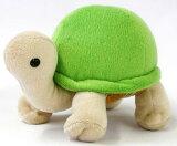 先生??Yochiyochi Nokonoko可爱的手掌大小的龟!锡昆龟绿尺寸:高10厘米[リクガメ シドくん GREEN サイズ:H10cm(メール便NGです)]