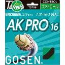 樂天商城 - GOSEN(ゴーセン) ウミシマ AKプロ16 ブラック TS706BK