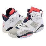 NIKE AIR JORDAN 6 RETRO ナイキ エア ジョーダン 6 レトロ WHITE/INFRARED 23/GREY/SAIL 384664-104