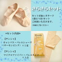 If buy it with leotards; 3,180 yen! [, please put it in a cart, and ※【 comfort ギフ _ wraps set 】※ canvas ballet shoes and tights shiningly サンシャ] [tomorrow easy correspondence]