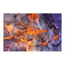 ウォールステッカー MU3アクセント壁紙 化石のオブジェ-tp3014☆オブジェ ダイナソー 恐竜 写真 ポスター 絵画 シール