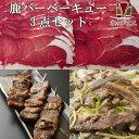 【送料無料】北海道の天然エゾシカを堪能!ジビエバーベキューお...