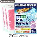 Washing Craftsman(ウォッシング クラフトマン)アイスフレッシュ 10g×3回分(自動製氷機用洗浄剤/製氷機洗剤/除菌/給水タンク)