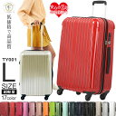 【最大50%OFFクーポン配布中】 スーツケース lサイズ ...