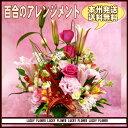 【夫婦】【秋限定】【敬老の日】 【ピンク】人気の赤・ピンク系...