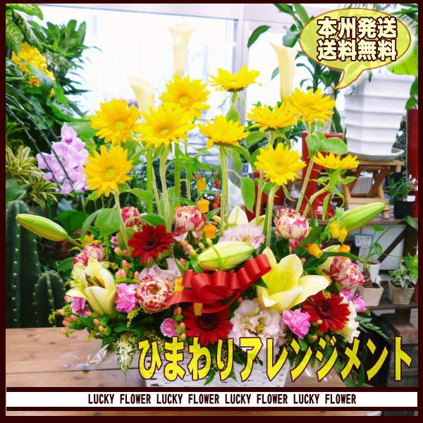 【父の日】【ひまわり】ひまわり 黄色×オレンジ系...の商品画像