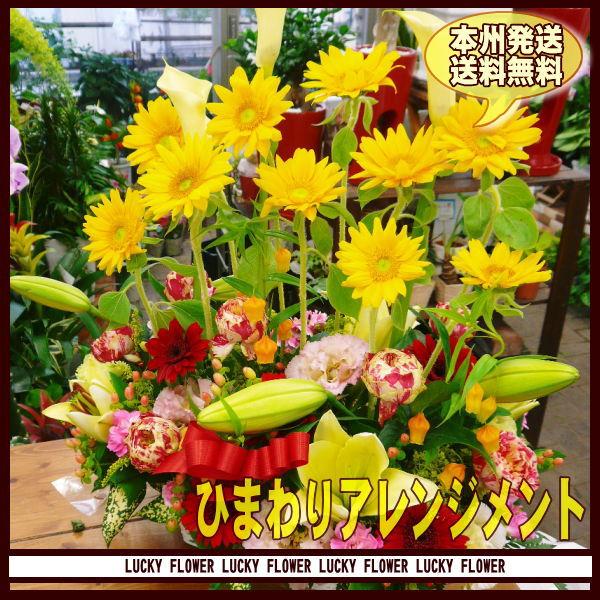 【父の日】【ひまわり】ひまわり 黄色×オレンジ...の紹介画像3
