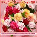 MIXカーネーションの花束【母の日】【夏限定】【MIX】【送料無料】【あす楽 関東】