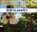 楽天ウエディングサロンLS[送料無料]パラシュートベア ブーケトス 激安 結婚式 演出 15,000円 発射機レンタル料金10,000円即返金になる、パラシュートベア2カップル4匹 激安