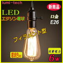 LEDエジソンランプ E26電球 消費電力6W デザイン電球 レトロ電球 フィラメントを再現 LED電球◆ED-D6