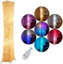フロアランプ LED電球2個 おしゃれ 間接照明 調光&調色 スタンドライト フロアスタンド フロアライト 調光と色のロマンチックな楽しい雰囲 創意 和風 居間用 北欧 RGB電球 無線式リモコン操作 プレゼント (132X26CM) LVYUAN(リョクエン)