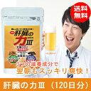 ウコン・オルニチン・肝臓エキス サプリメント 肝臓の力 12...