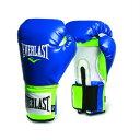 Everlast エバーラスト プロスタイル練習用ボクシンググローブ16oz ブルー×グリーン 並行輸入品