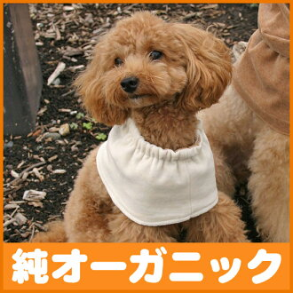 Dog S size pure organic cotton 100%