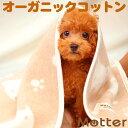 犬 ブランケット クマ柄/Lサイズ オーガニックコットン