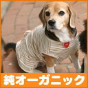 It is dogware of the organic cotton the clothes [one piece with three colors of horizontal stripe frills] of the dog (clothes of 1-3, the small dog)