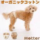 犬 サニタリー ショーツ ドット柄/1-3号 オーガニックコットン