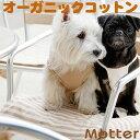 犬用【ボーダーカフェマット】Sサイズ純オーガニックコットン100%のドッググッツ(Cafe mat)