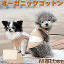 犬用【ミニウラ毛カフェマット】Sサイズ純オーガニックコットン100%のドッググッツ(Cafe mat)