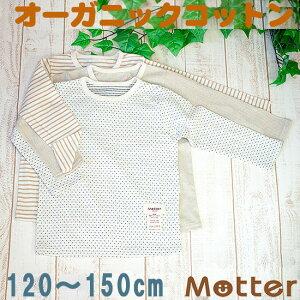 Tシャツ オーガニックコットン ジュニア インナー