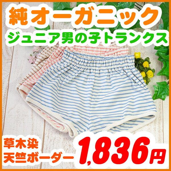 ジュニア 男の子 草木染天竺ボーダートランクスパンツ 120 130 140 150cm オーガニックコットン 日本製 全3色