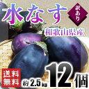 訳あり 水なす 和歌山県産 12個入り 約2.5kg 送料無料!(北海道、沖縄県除く) 茄子 水ナス 水茄子 ご自宅用 ご家庭用