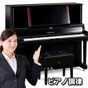 ピアノ調律 アップライト 新規お申込み【2倍】鍵盤除菌クリーナー&クロス1枚プレゼント