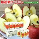 葉とらず りんごにんじんミックスジュース 青森産 青研 125ml 30本 4ケース ストレート100%果汁 無添加 ジュース 送料無料 お歳暮
