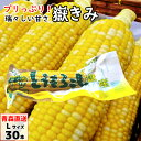 【ポイント5倍】 嶽きみ(真空パック) Lサイズ 30本 青...