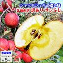 りんご 青森 訳あり 送料無料 5kg サンふじ フジ リンゴ 林檎 葉とらずりんご