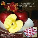 りんご 贈答用 最高級 青森県産 送料無料 サンふじ 10kgリンゴ 林檎