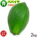 【送料込み】沖縄産 青パパイヤ(約2キロ)3玉�5玉 │沖縄野菜 パパイン酵素│