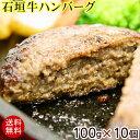 【送料無料】石垣牛ハンバーグ 100g×10個 (冷凍) │黒毛和牛ハンバーグ│