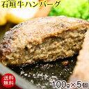 【送料無料】石垣牛ハンバーグ 100g×5個 (冷凍) │黒毛和牛ハンバーグ│