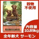 7月6日入荷。ピナクル グレインフリー サーモン&ポテト (全年齢犬対応) 10.89kg 【リパッ