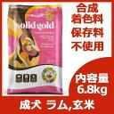 【訳あり】 【並行輸入品】 ソリッドゴールド フントフラッケン 6.8kg