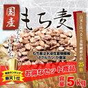 国産 もち麦 5kg もちむぎ ごはん 大麦 押麦 押し麦 ...
