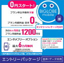 【メール便限定】BIGLOBE(ビッグローブ)モバイル エン...