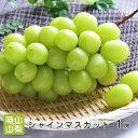 【皮ごと食べれる】 山梨・岡山県産 シャインマスカット 1房...