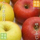 送料無料 青森県産 りんご サンふじ ぐんま名月 8-12玉 約3kg りんご詰め合わせ りんご 蜜