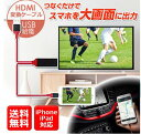 HDMIケーブル iPhone 変換ケーブル テレビやモニターにiPhoneの画面を大画面で表示
