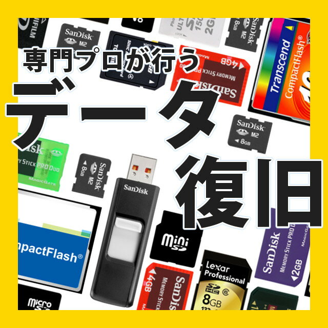 データ復旧 データ復元 データ復活 フラッシュメモリー .. デジカメ USBメモリー SDHC microSD miniSD CF コンパクトフラッシュ メモリースティック データ修復 リカバリー