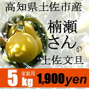 高知県土佐市産【家庭用】楠瀬さんの土佐文旦 5kg